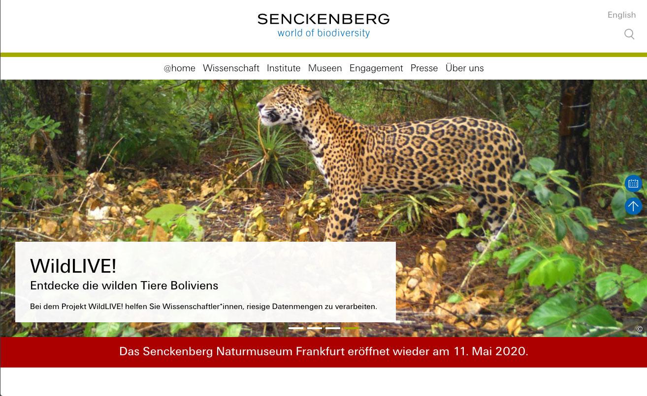 https://www.senckenberg.de/de – Senckenberg Gesellschaft für Naturforschung